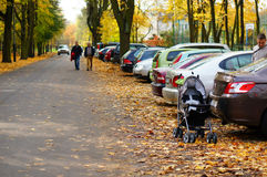 Parked cars by a park Royalty Free Stock Photo