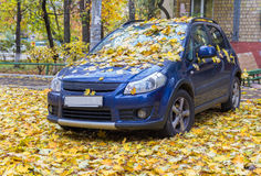 Parked cars strewn with yellow leaves Stock Photo