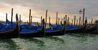 Parked Gondolas. A row of parked gondolas outside St Mark's Square in Venice Royalty Free Stock Photo