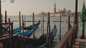 Parked gondolas on Piazza San Marco and The Doge's Palace embankment with the bell tower of the Saint Giorgio Maggiore stock video