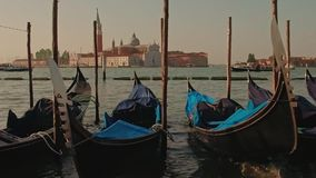 Parked gondolas on Piazza San Marco and The Doge's Palace embankment with the bell tower of the Saint Giorgio Maggiore stock video footage