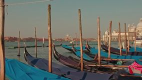 Parked gondolas on Piazza San Marco and The Doge's Palace embankment with the Santa Maria Della Salute, Church of Health stock video