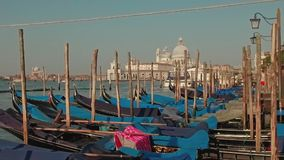 Parked gondolas on Piazza San Marco and The Doge's Palace embankment with the Santa Maria Della Salute, Church of Health stock footage