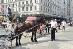 Parked horse carriage by Central Park. Horse drawn carriage in Central Park, Manhattan, New York City Royalty Free Stock Image