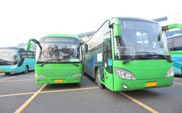 Parked large buses. Large new buses parked at wide station Royalty Free Stock Photos