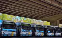 Parked public busses Royalty Free Stock Image