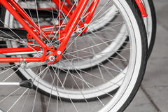 Parked red street bicycles for rent, rear wheels Royalty Free Stock Image
