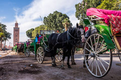 Parked row of horses and carts Stock Photos
