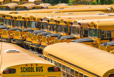 Parked School bus - Buses Stock Photography