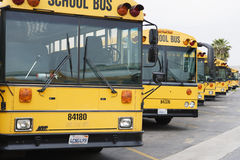 Parked School Buses Stock Photos