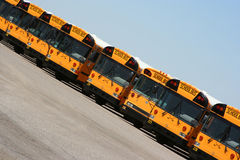 Parked school buses. Line of parked school buses at an angle Royalty Free Stock Image