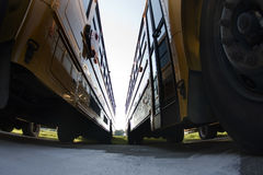 Parked School Buses Royalty Free Stock Images