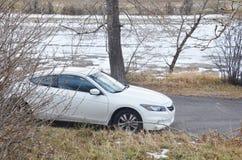 Parked white car royalty free stock photos