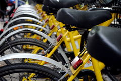 Parked yellow bicycles. Concept of bike sharing Royalty Free Stock Images