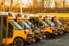 Parked Yellow Hempfield School Buses Stock Image