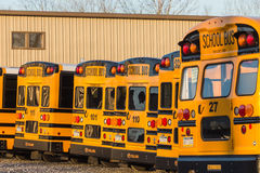 Parked Yellow School Buses Rear View Stock Image