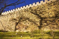 parken för den beijing porslinstaden shadows väggen Royaltyfri Fotografi