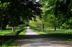 parken går Royaltyfria Foton