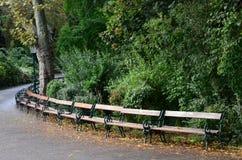 parken går Arkivbilder