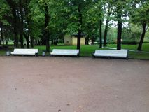 parken går Royaltyfria Bilder