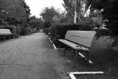 parken går Arkivfoton