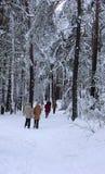 parken går vinter Fotografering för Bildbyråer