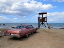 Parken nahe dem Meer Lizenzfreies Stockbild