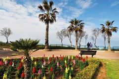 Parken Sie Weg mit Palmen und bunten Blumen gegen Meer mit stockfoto