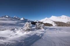 Parker Ridge dans rocheux canadien Photographie stock libre de droits