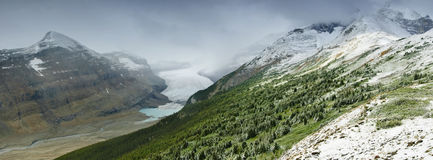 Parker Ridge et glacier de Saskatchewan Photographie stock