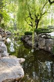 Parkera av Baotu Quan i Jinan, Kina Royaltyfria Bilder