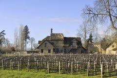 Parkera av slotten av Versailles Royaltyfria Foton