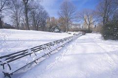 Parkera bänkar med den insnöade Central Park, Manhattan, New York City, NY efter vintersnöstorm Royaltyfria Bilder