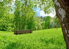 Parkera bänken i natur Fotografering för Bildbyråer