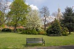 Parkera bänken i vår med kyrkan i bakgrund, Greenwich, England Royaltyfri Fotografi