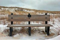 Parkera bänken i vintern Royaltyfri Foto