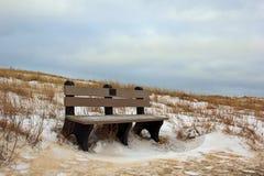 Parkera bänken i vintern Arkivfoto