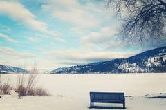 Parkera bänken som förbiser den fryste sjön Royaltyfri Bild