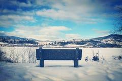 Parkera bänken som förbiser vinterlandskap Royaltyfri Bild