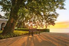 Parkera bänken under träd på soluppgång Fotografering för Bildbyråer