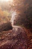 Parkera dalen i höst i dimman Arkivbilder