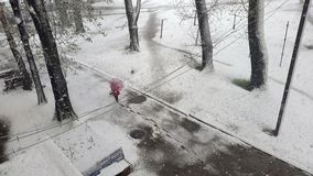 Parkera för paraplyträdet för kvinnan den röda vintern för snö Arkivbilder