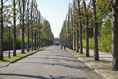 Parkera från Sanssoussi - Potsdam (Tyskland) Royaltyfri Fotografi