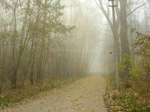 Parkera gränden i dimman Royaltyfri Foto