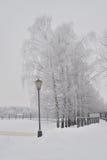 Parkera gränden i vinter Royaltyfri Bild