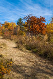 Parkera hösten Fotografering för Bildbyråer