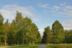 Parkera i Mustasaari, Oulu, Finland Royaltyfria Bilder