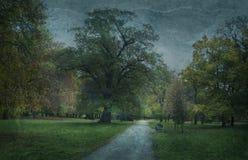 Parkera i nedgång på grungy bakgrund Royaltyfri Fotografi