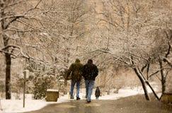 Parkera i snö Arkivfoton