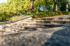 Parkera i Sunny Autumn Day With Golden Leaves i träd, Lettland, Europa, begrepp av att koppla av på loppdag i fred och harmoni royaltyfri fotografi